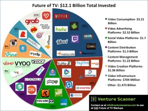 Future of TV Online Video Infographic